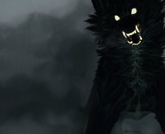 Blackdog 2017